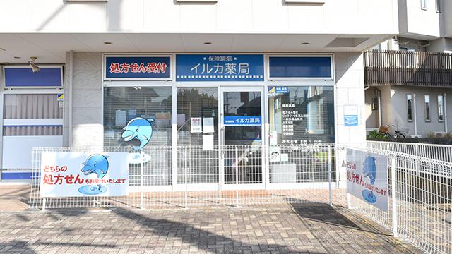 イルカ薬局の画像