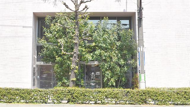 そうごう薬局 世田谷上町店の画像