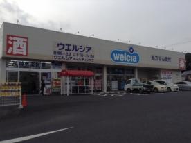 ウエルシア薬局 鹿嶋緑ヶ丘店の画像