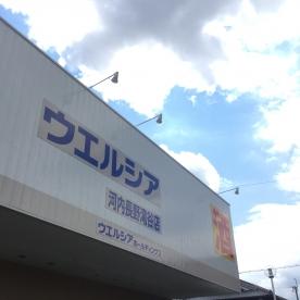 ウエルシア薬局 河内長野滝谷店の画像