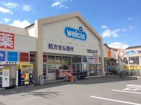ウエルシア薬局 岐阜加納本石町店の画像